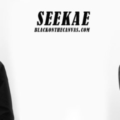 It's Just Chasing the Right Feeling: An Interview with Alex Cameron of Seekae