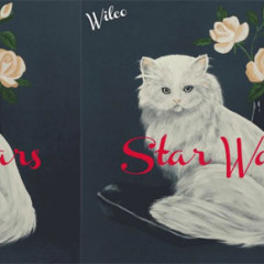 Things this good shouldn't be free: Wilco is as good as ever on 'Star Wars'