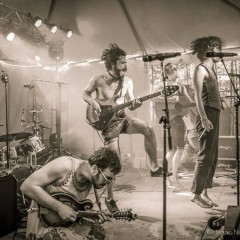 Bella's Bartok are a Circus of Sound You Must Not Miss