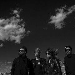 Interview with Dead Leaf Echo